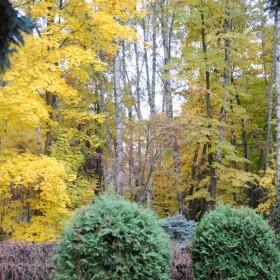 Magiczne sposoby na jesień :)