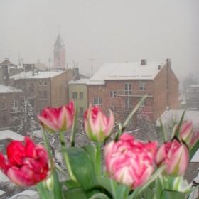 Świątecznie-wiosennie &#x3B;)