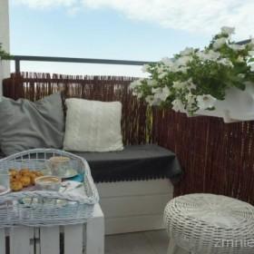 Poranny relaks na balkonie :)