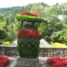 Zwierzaki cudaki i inne kwiaty.