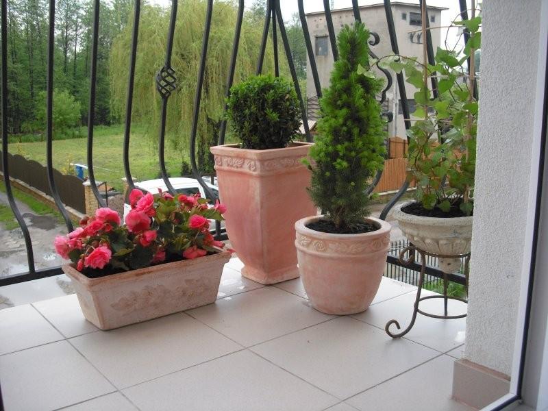 Balkon, Czerwcowy:)))