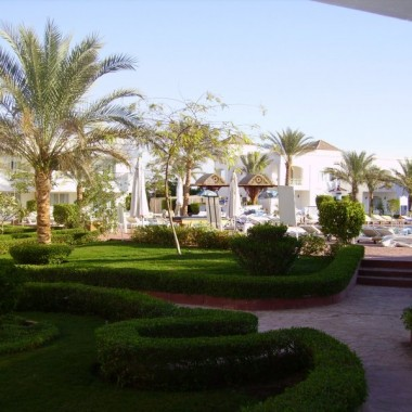 ...odpoczynek w ogrodzie egzotycznym...egipt...