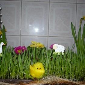 Wielkanocnie 2008