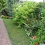 Pozostałe, 18 sierpnia 2012 - w ogrodzie - chodniczek za domem