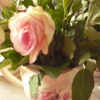 ...............i róże.............