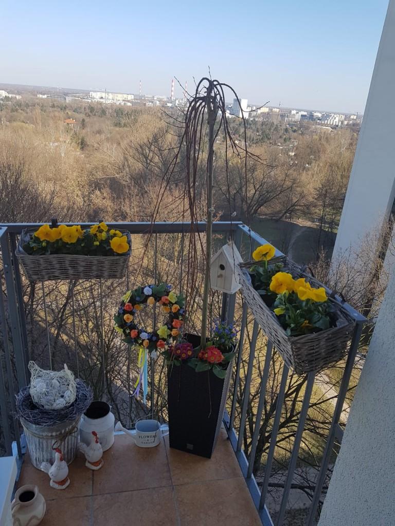 Balkon, Wiosna 2019