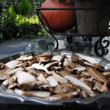 ....no i jak to w lasku o tej porze .....grzyby muszą być i się suszą :)