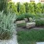 Pozostałe, Ogródek ziołowy