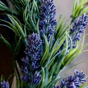 Kolekcja Lavender de Provance