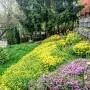 Taras, Nadeszła wreszcie upragniona wiosna :)