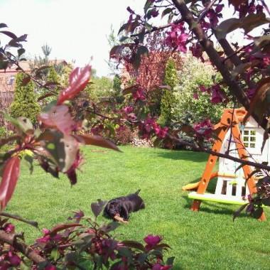 ogród część II