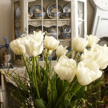 .................i tulipany...........