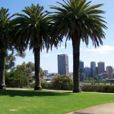 Spacer po  Krolewskim Parku w Perth