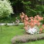 Ogród, Majowo-czerwcowy ogród Ewy - Ładnie?