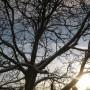 Pozostałe, Lutowa...............zimowa..............z damami.....i panami.. - .............i słonko.............i błękitne niebo................