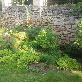 Mój mały ogródek w letniej odsłonie