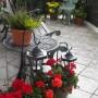 Ogród, Dzisiejszy spacer i nie tylko...