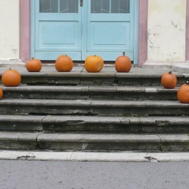 Moja kolorowa jesień..................