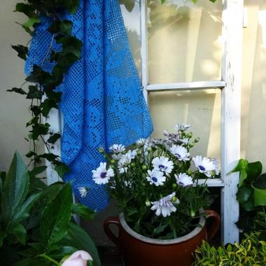 W ramach mody na recykling przytargałam do domu okienko do zagospodarowania w ogrodzie