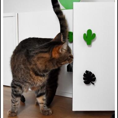 Nasz dekorator &#x3B;) testuje nowe wzory gałek meblowych.