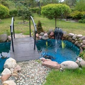 Oczko wodne wiosna-lato 2011r.