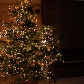 Magia Świąt nadchodzi