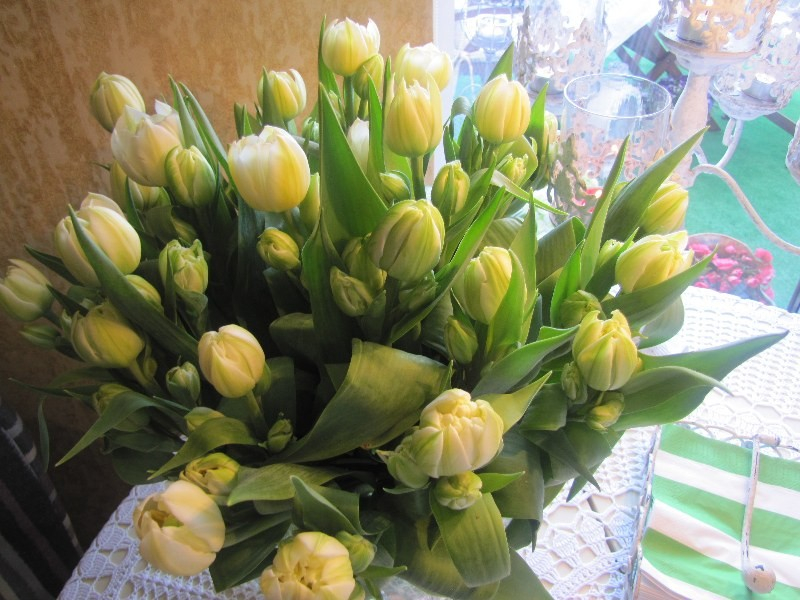 Pozostałe, Majowo to i owo. - Tulipanki od syna na Dzień Mamy,bo potem nie będziemy się widzieli:)