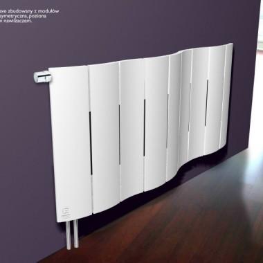 Grzejnik Dekoracyjny - I miejsce w konkursie Terma Design 2008