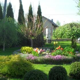 Wiosennego ogrodu ciąg dalszy :)
