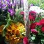 Dekoratorzy, Majowe robótki.................. - ....................i kwiatki na balkonie................