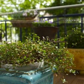 balkon i okolice