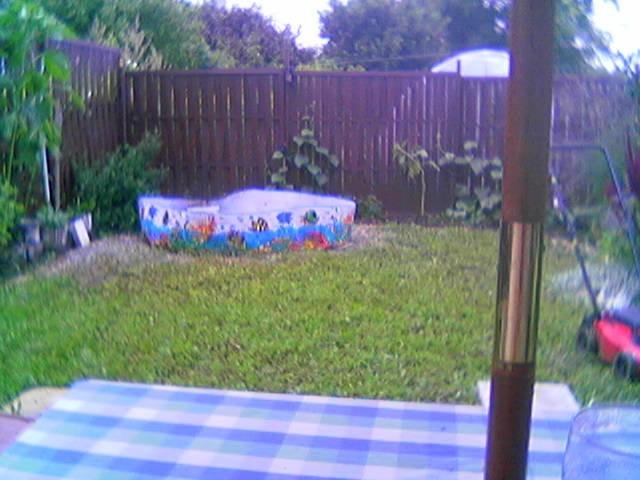 Ogród, moj ogrodek,moj lew moj kot - tak bylo dzis jest inaczej ale nowe zdjecie tego kacika zrobie na wiosne wtedy zobaczycie ile tu sie zmienilo