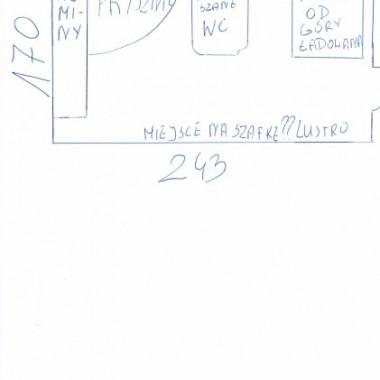 łazienka w stanie developerskim