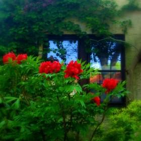 Nastrojowe miejsca w Forest Hills