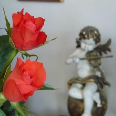 .................i róże...............