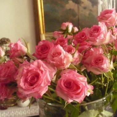 ...............róże dla domu.........