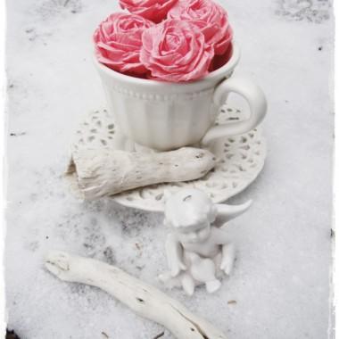 Różana galeria albo zima w różach  &#x3B;&#x3B;