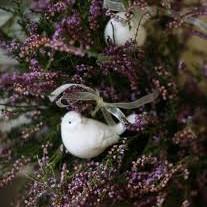 Już do schyłku lato zmierza ,zboża z pola są zebrane.Dnia krótszego noc domierzaw lesie liście malowane.Na polanie pod mym borem ,jest przepiękne wręcz zjawisko.Fiolet mieni się kolorem,to po prostu wrzosowisko.Jak kobiercem wymoszczona,na nim perły - krople rosy.Zapach miodu się unosi ,tak cudownie pachną wrzosy.Nad polaną zachód słońca,jak odbicie wrzosowiska.Fiolet róż jakby w pląsach,widać jesień bardzo bliska.