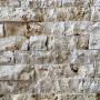 Ściany, Rafa - Tak może wyglądać ściana z regularnej cegiełki.