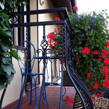 Dziś galeria monotematyczna. Moje pelargonie we wrześniowym słońcu jeszcze piękniej się rozrosły i doszłam do wniosku, że zasługują na pokazanie. Pelargonie pewnie większość z Was lubi więc zapraszam do obejrzenia tych z moich balkonów.