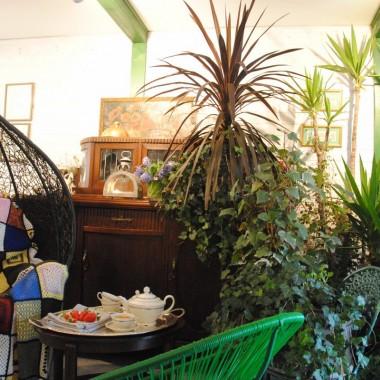 """Za oknem bywa biało ,natomiast w letnim pokoju non stop zielono :) Ostatnio kupiłam zielony fotel i kilka """"doniczek"""" (czyt.starych skorup) i tak bardzo zatęskniłam za wiosną ,że poszłam podskubać i podlać moje ogrodowe rośliny ,które zimują w letnim :) Wszystko wypuszcza już młode listeczki ,już marzy o słonku i ogrodowym życiu :) Zapraszam  na szybką zimową herbatę ,bo temp.ok 12-14 st.( tyle tam teraz jest ) nie jest jednak tą wymarzoną na siedzenie w bujaku &#x3B;)"""