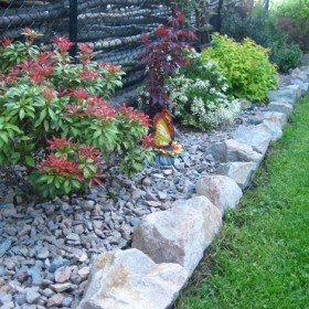 Mój ogród rozkwita :)