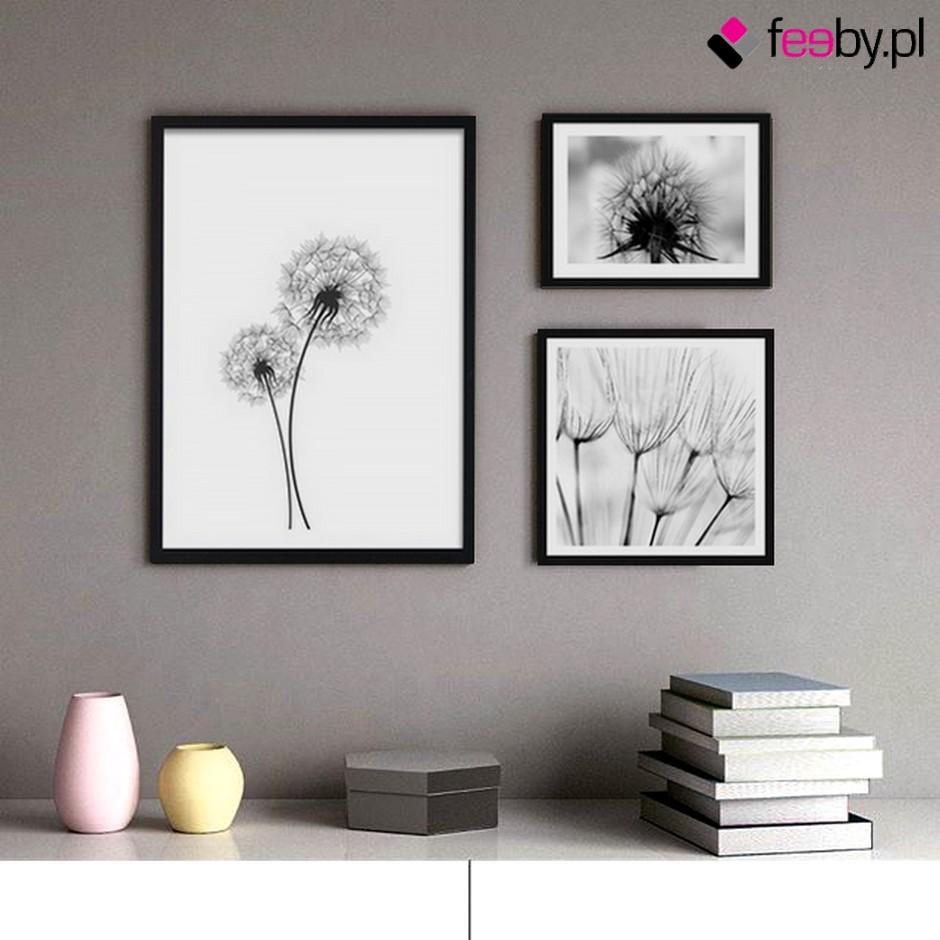 Pozostałe, Elegancja obrazów czarno białych - Ulotność niejedno ma imię. Tym razem brzmi ono dmuchawce i wiatr. Nowoczesne obrazy czarno białe chwytają to co nieuchwytne - zjawiskowość natury, zamieniając w ozdobę ściany. źródło Feeby.pl
