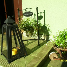 Słoneczna niedziela w moim ogrodzie:)))
