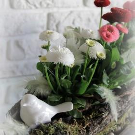 wiosennie i świątecznie