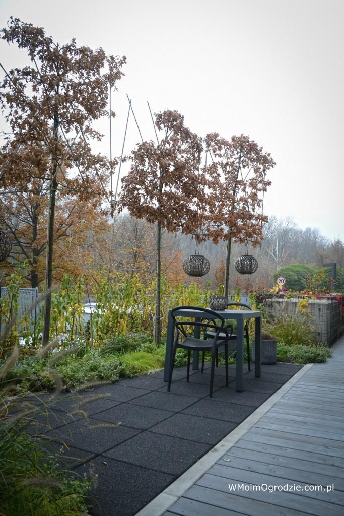 Taras, Mały, miejski ogród na dachu garażu - Mały, nowoczesny miejski ogródek