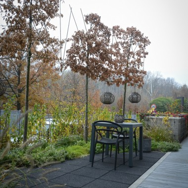 Mały, nowoczesny miejski ogródek