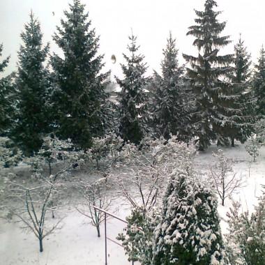 Zima zima...