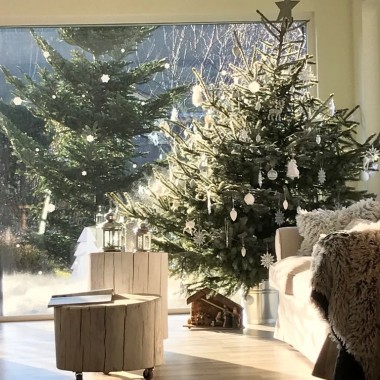 Święta w szarym domku*