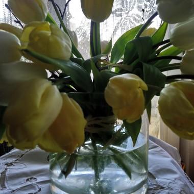 Coraz bliżej wiosna ...................wczoraj jeszcze śniegiem sypnęło .....................ale dziś słonko świeci ......................kwiatów przybywa i w domu i w ogrodzie ...................i powstają nowe pisanki haftowanki tym razem w kwiatki, tak jakby wyskoczyły prosto z zielnika :)  Pozdrawiam Was bardzo serdecznie i życzę pięknej wiosny :)